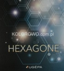 UGEPA HEXAGONE